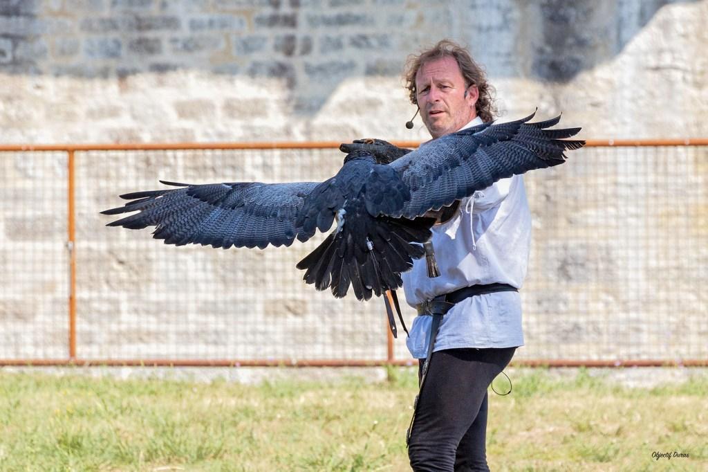 Fauconnier - GRCF Les Animaux des R.